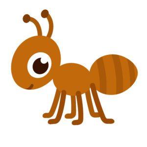 Illustration of ant cartoon on white background.