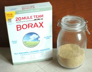 Borax and sugar to kill ants
