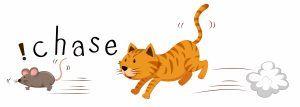 Ginger cat chasing a mouse illustration.