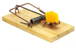 Mouse trap on white background.