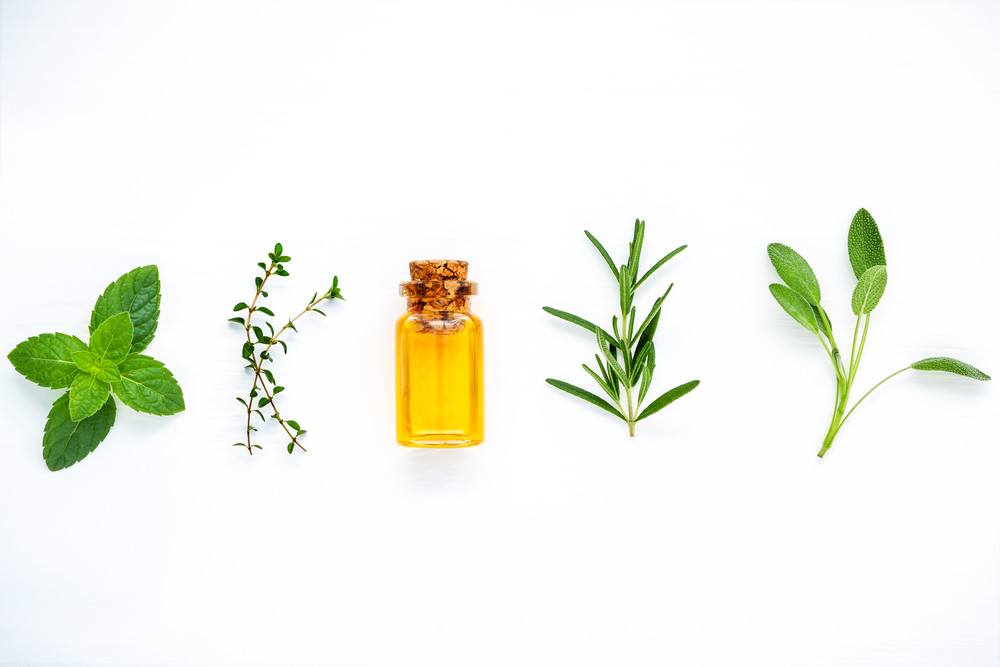 Bottle of peppermint essential oil with fresh herbal sage.
