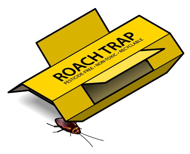 An adhesive cockroach trap with a visiting cockroach.