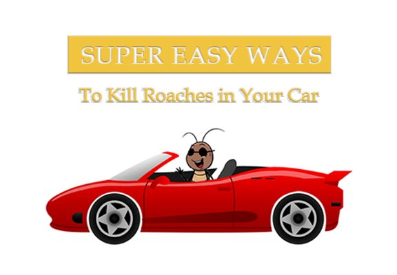 6 Simples Ways to Kill Roaches in Your Car Instantly - Pest Wiki