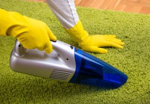 Close up of hands with rubber gloves holding cordless vacuum cleaner and hoovering green carpet on parquet floor.