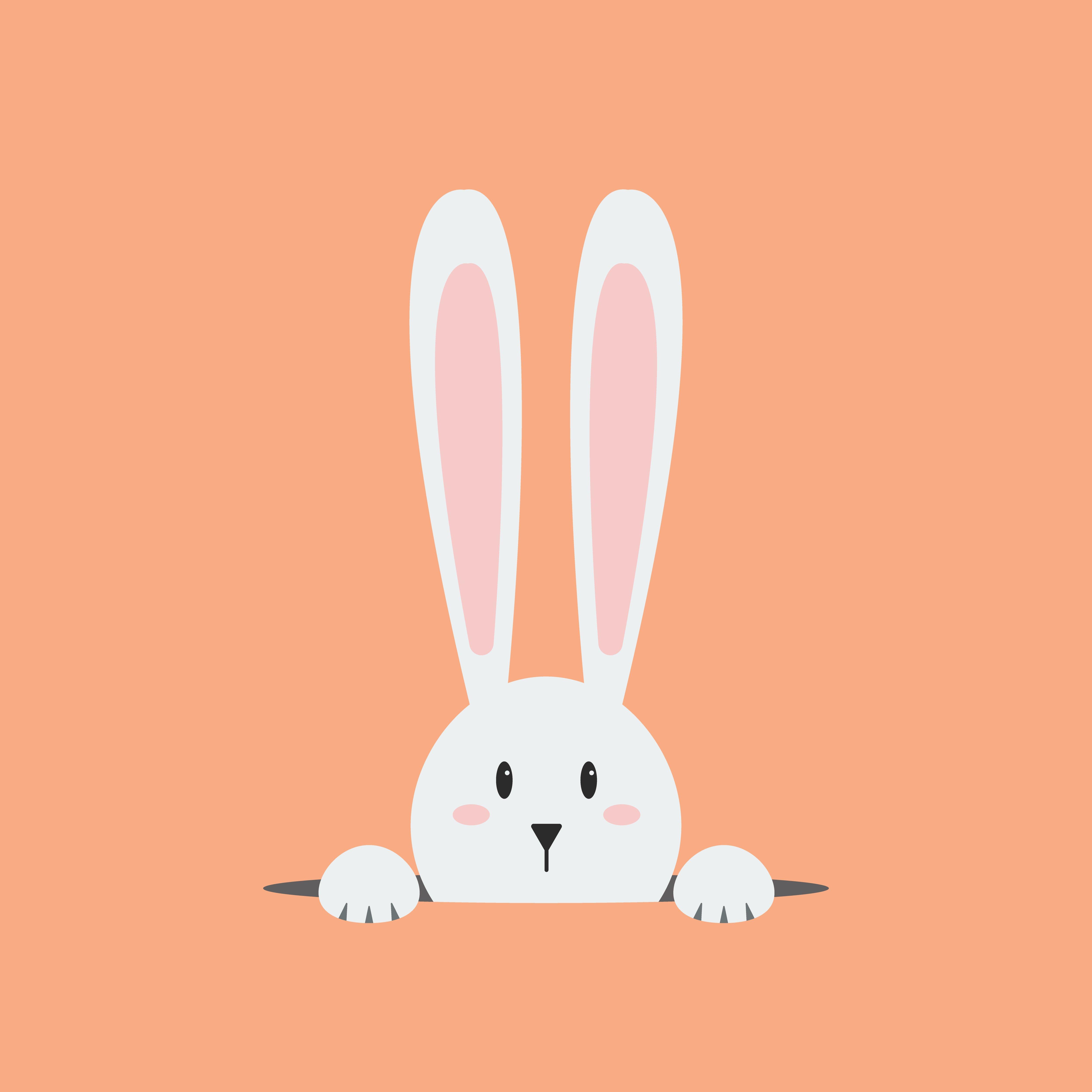 White rabbit in the hole on orange background.