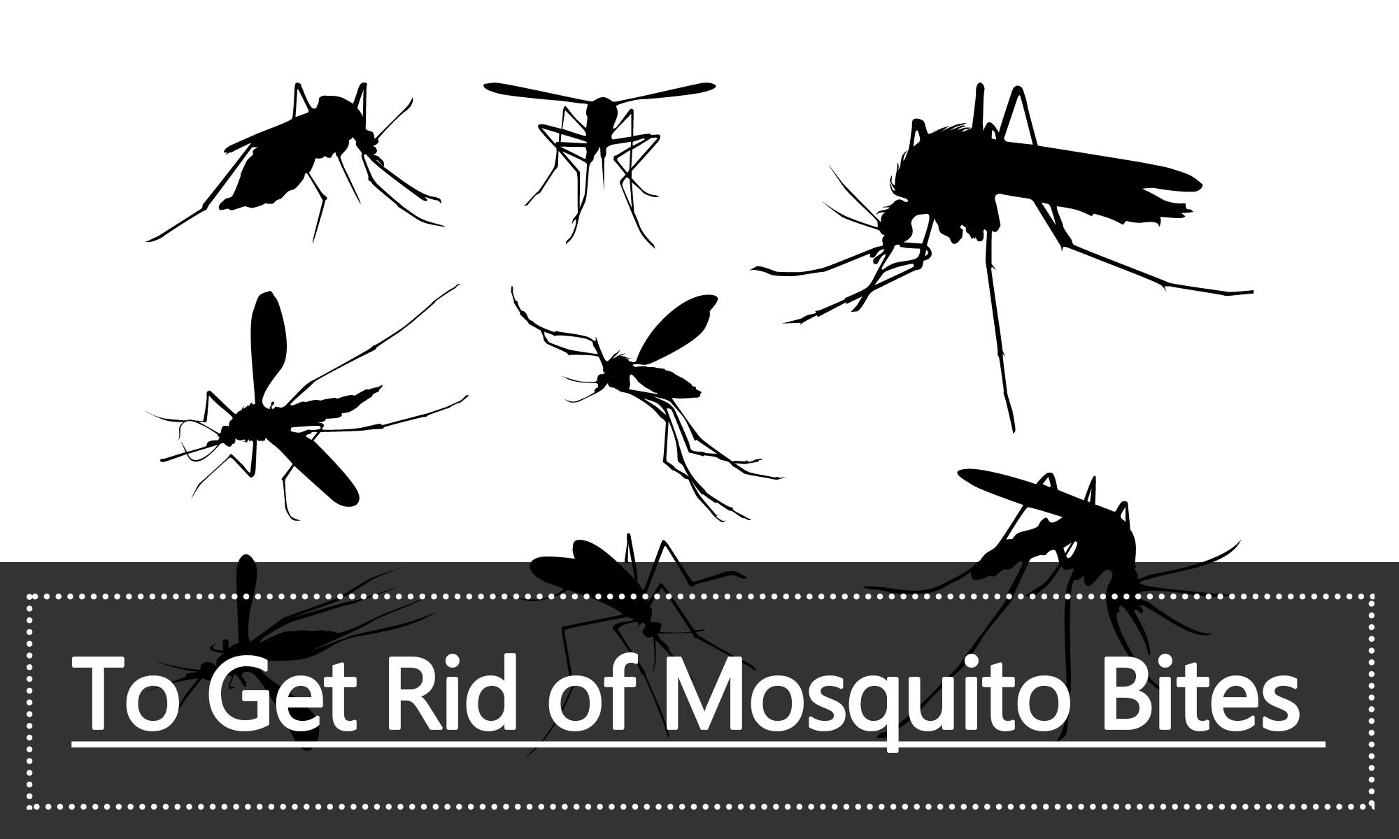 What to choose - chemical or folk remedies for mosquito bites