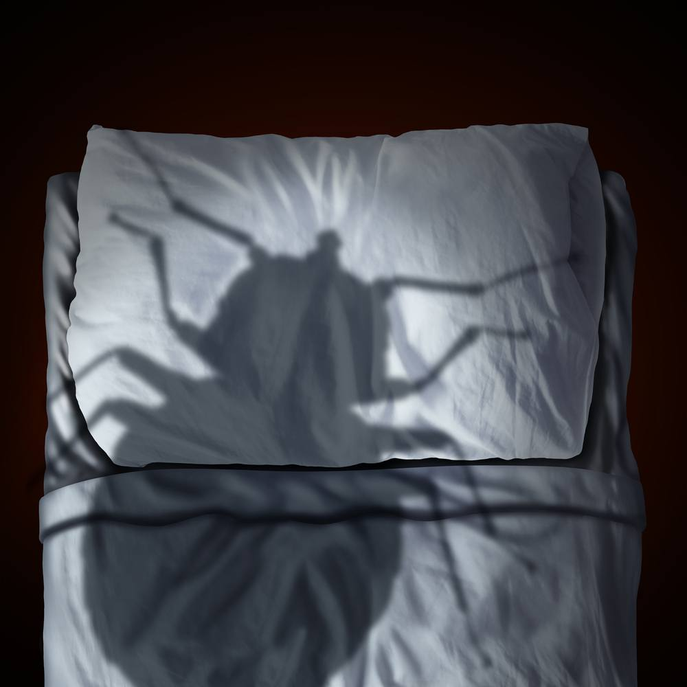 Bed bug fear or bedbug worry concept as a cast shadow of a parasitic insect pest resting on a pillow and sheets as a symbol and metaphor for the anxiety as a 3D illustration.