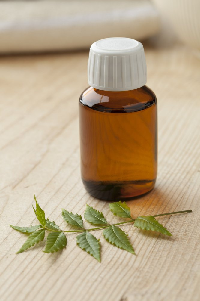 Bottle with Neem oil and green twig.