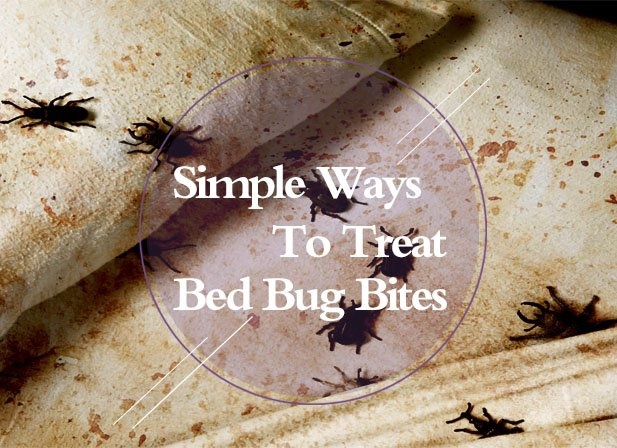 2 Simple Ways To Treat Bed Bug Bites At Home Identification