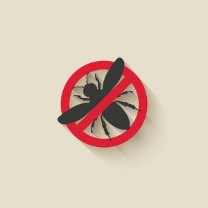 no bees sign