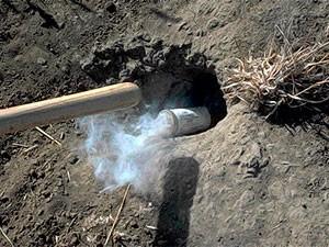 Fumigating groundhog's hole