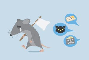 Rat raise a white flag for give up with way get rid of rat by home ownership