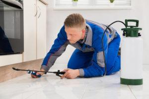 Male worker kneeling on floor and spraying pesticide on wooden cabinet.
