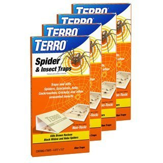 TERRO Spider & Insect Trap Product on White Background