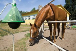 H-Trap Professional Horse Fly Control System Traps