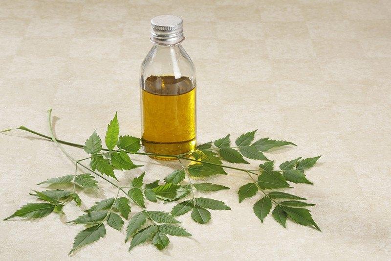 Neem treel eaves, seeds and neem oil