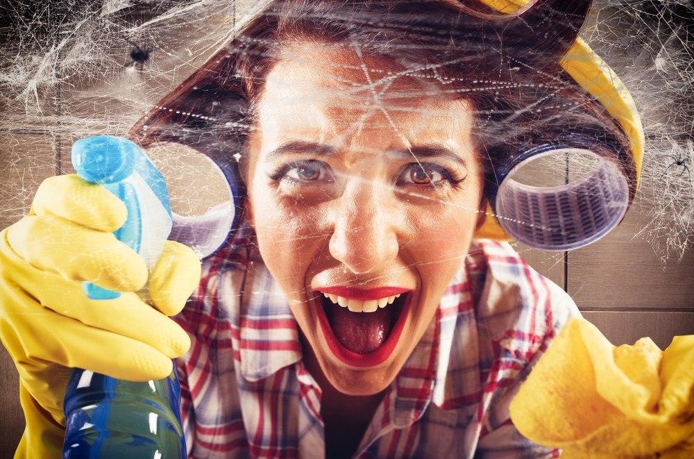 Desperate housewife screams seeing cobwebs on wall.