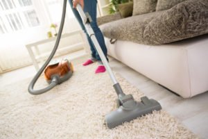 Cleaning carpet with vacuum cleaner in living room.