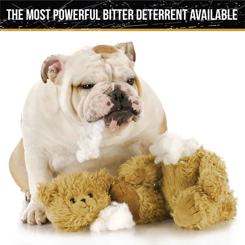 best dog repellent