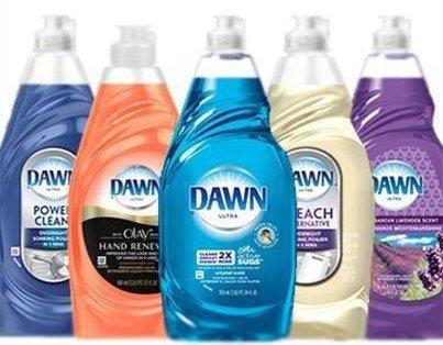 Is dawn dish soap good for fleas