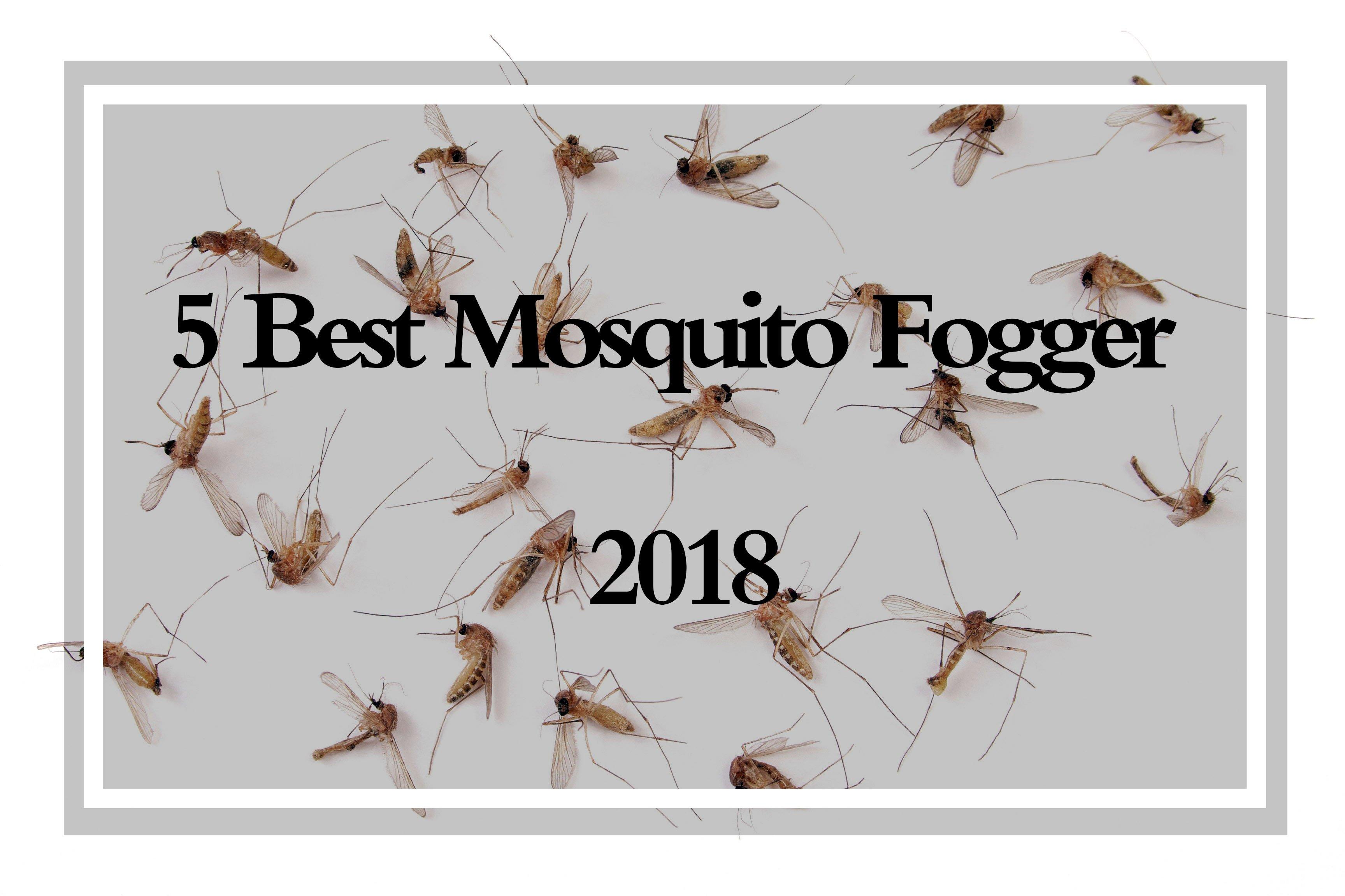 Mosquito Fogger