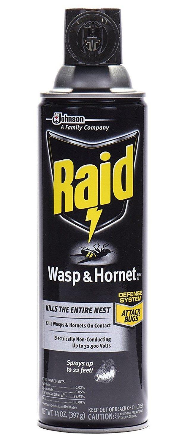 Best Wasp Spray - Raid Wasp & Hornet Killer