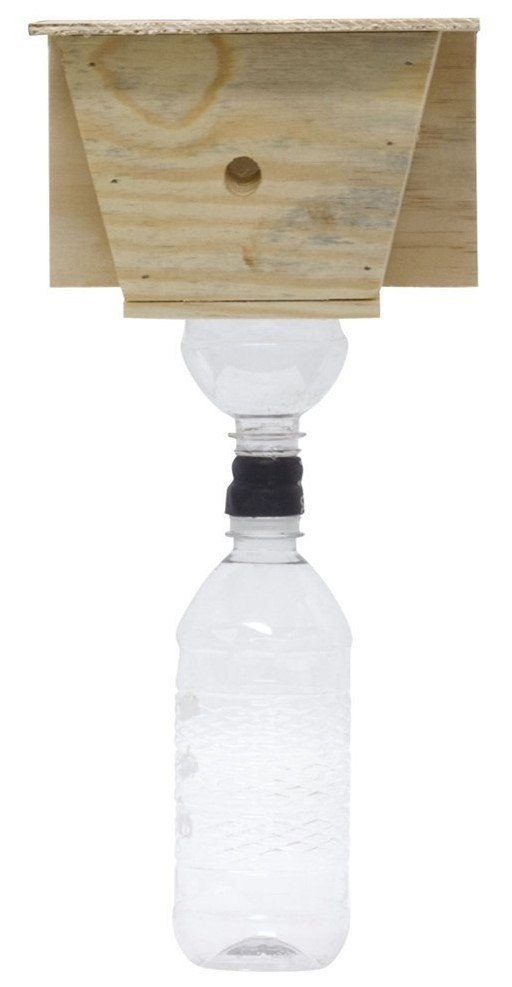 Carpenter Bees Trap