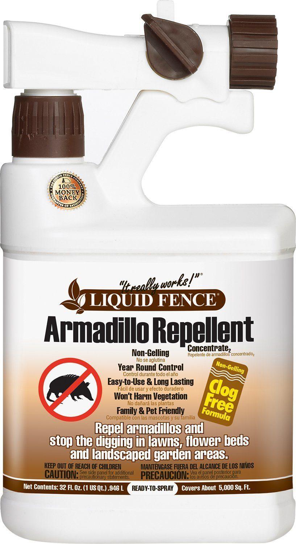 Best Armadillo Repellent