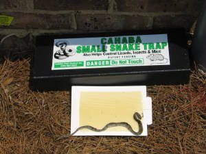 Best When you are looking for a snake trap, a few things come to mind. You need something that is effective, easy to use, available to buy, and also affordable. This Cahaba snake trap is amongst the newest in the market but also remains the most effective when it comes to trapping snakes. The trap is a considerable size this makes it easy for you to use for any type of snakes in your backyard.