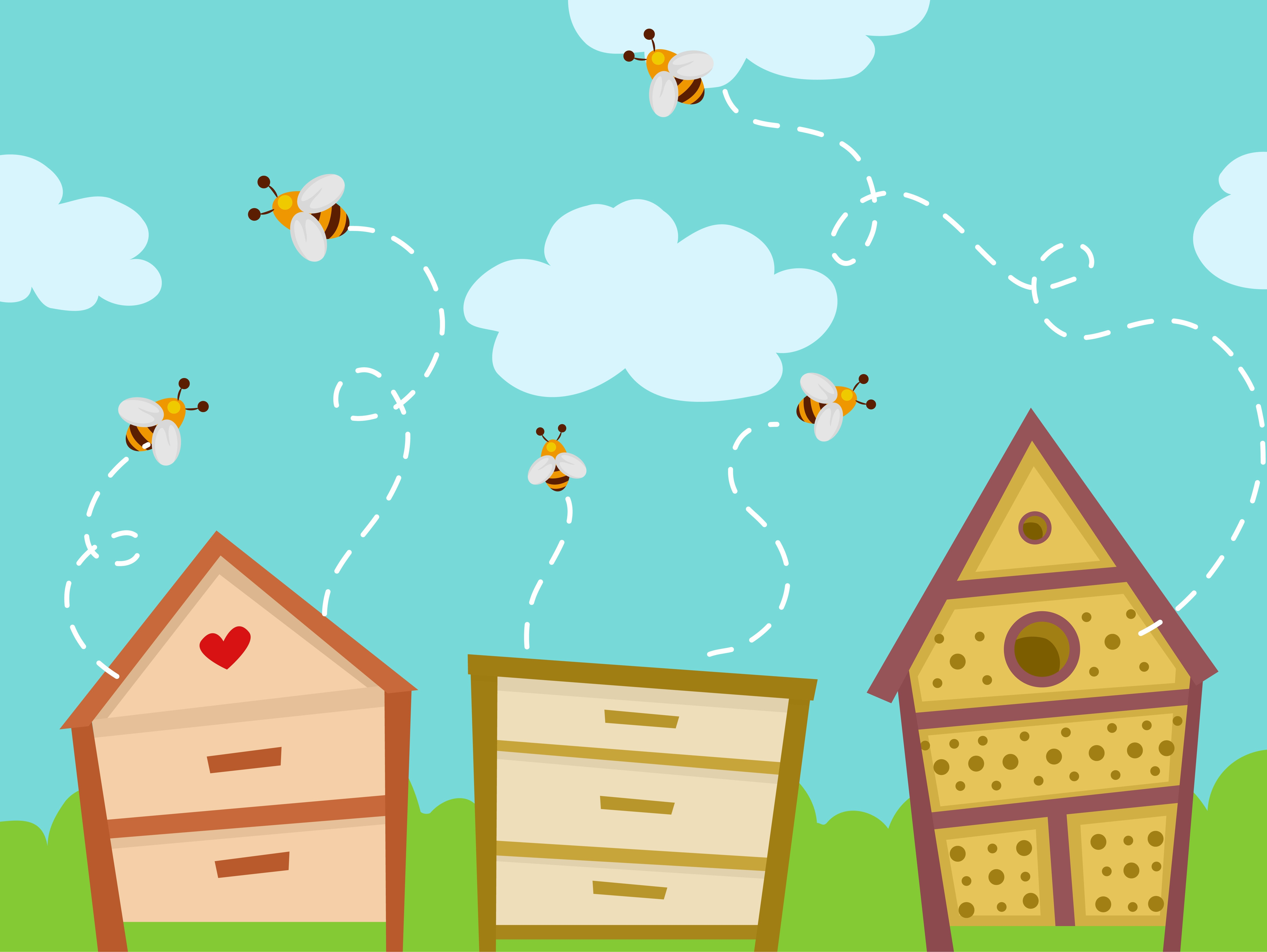 Getting Rid of Bees Without Killing Them - PestWiki