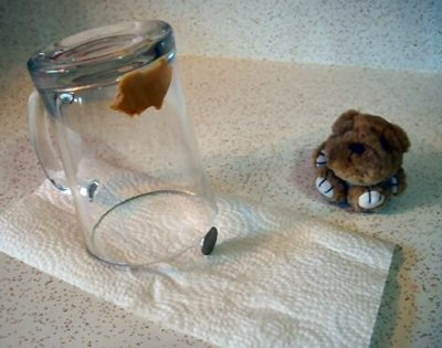 Glass and coin mouse trap