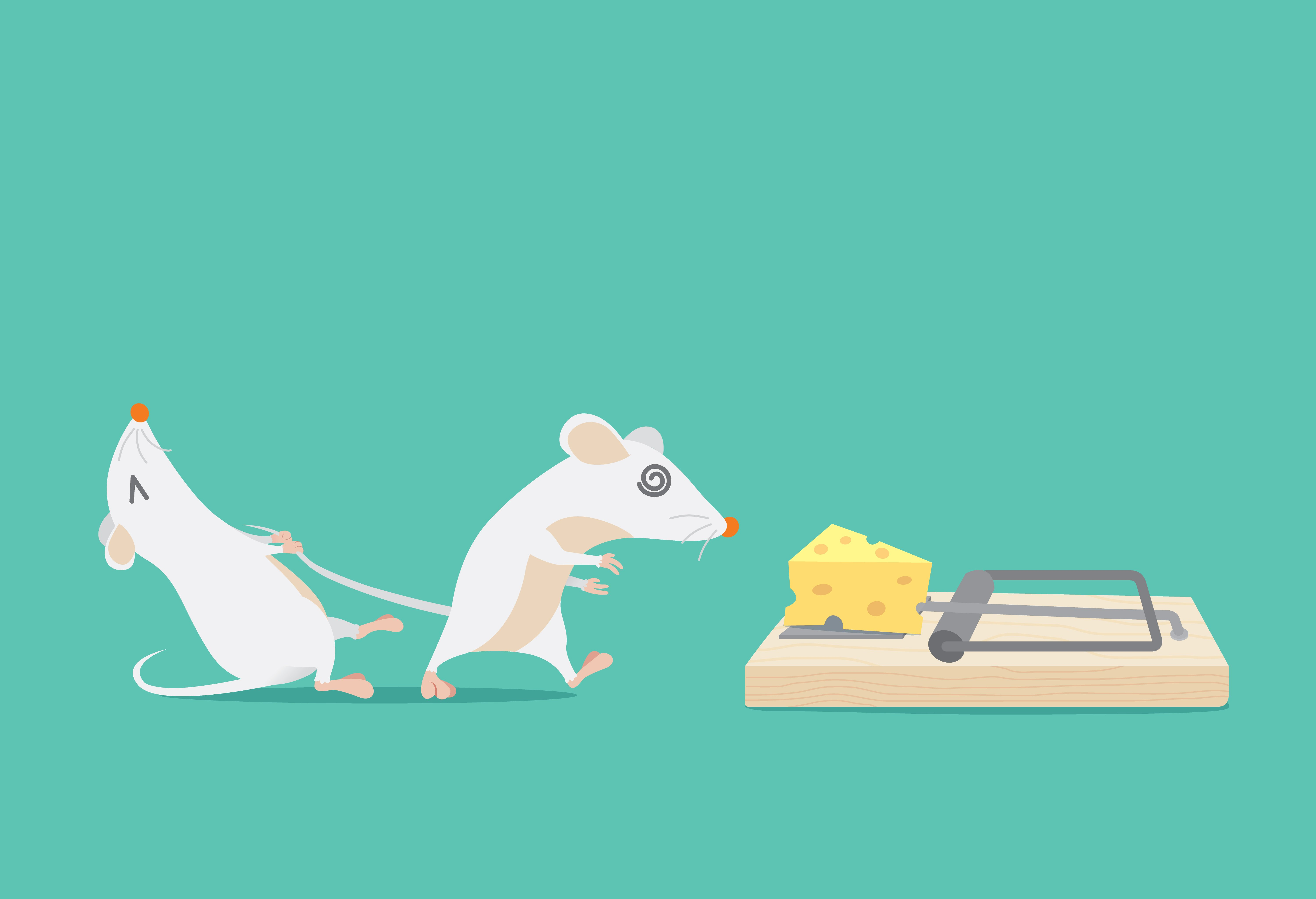 6 Easy Homemade (DIY) Mouse Traps - Pest Wiki