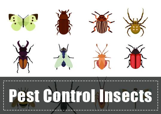 Pest Garden Control