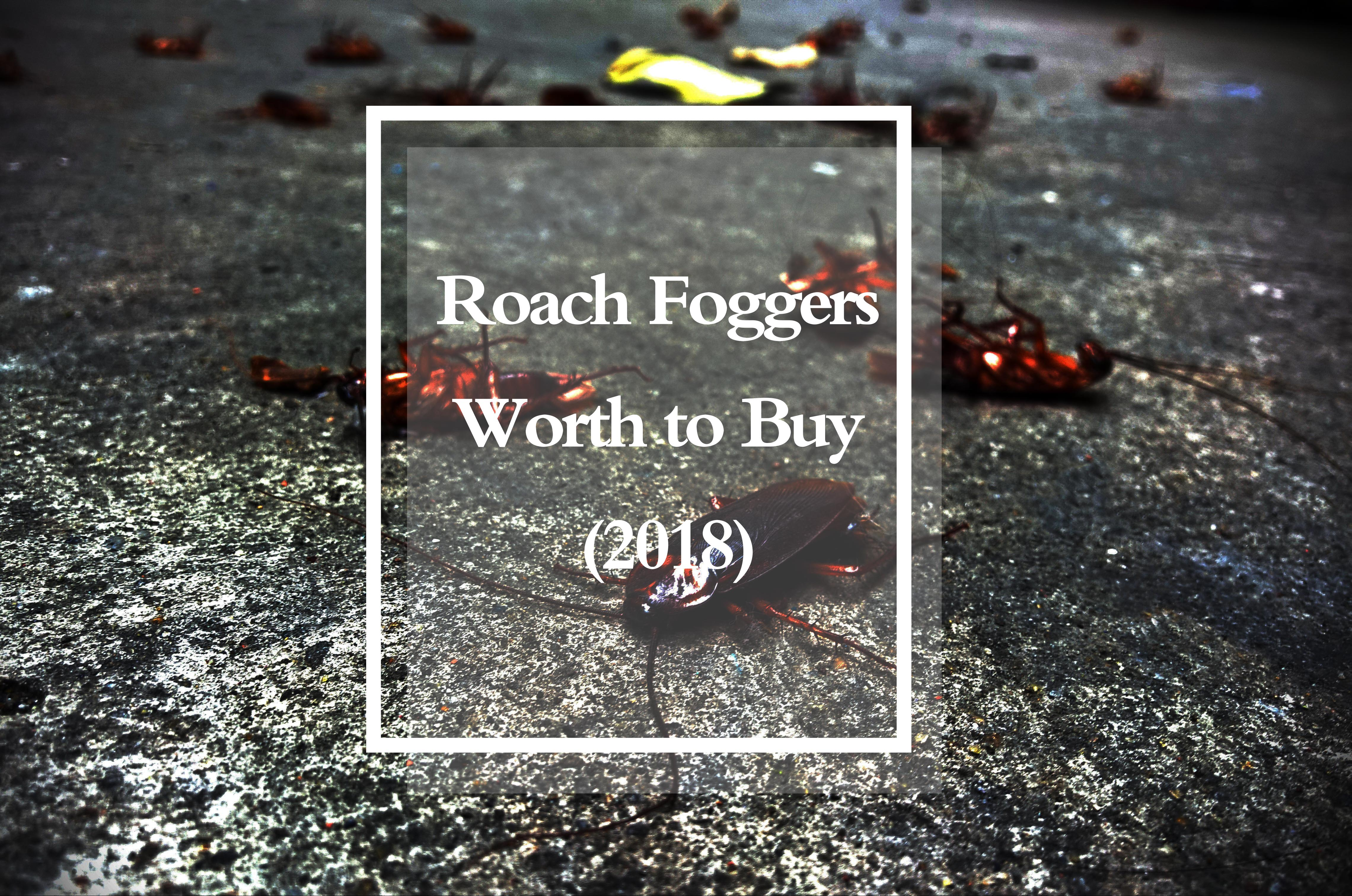 Top Roach Foggers