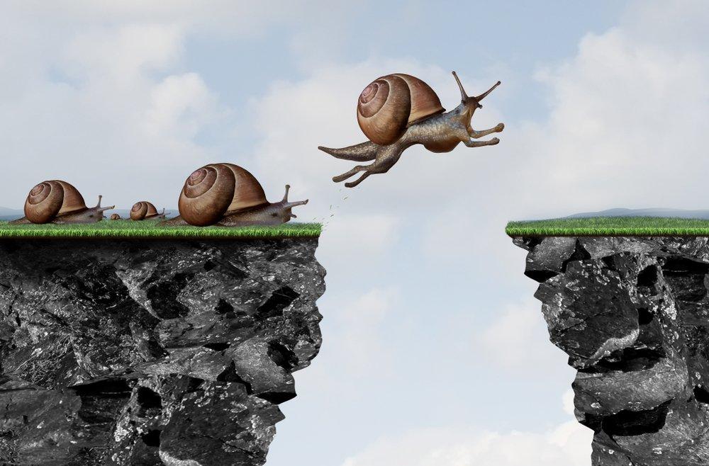 Snails are trailblazer
