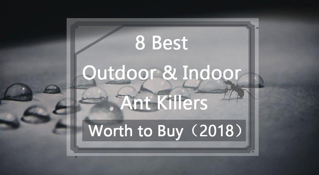 9 Top Best Ultrasonic Pest