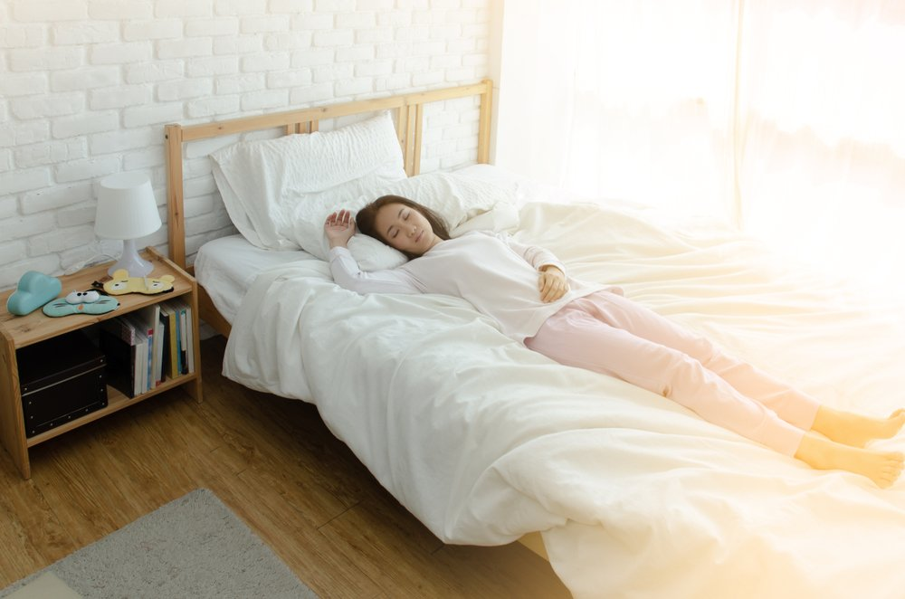 Hotel Bed Bug