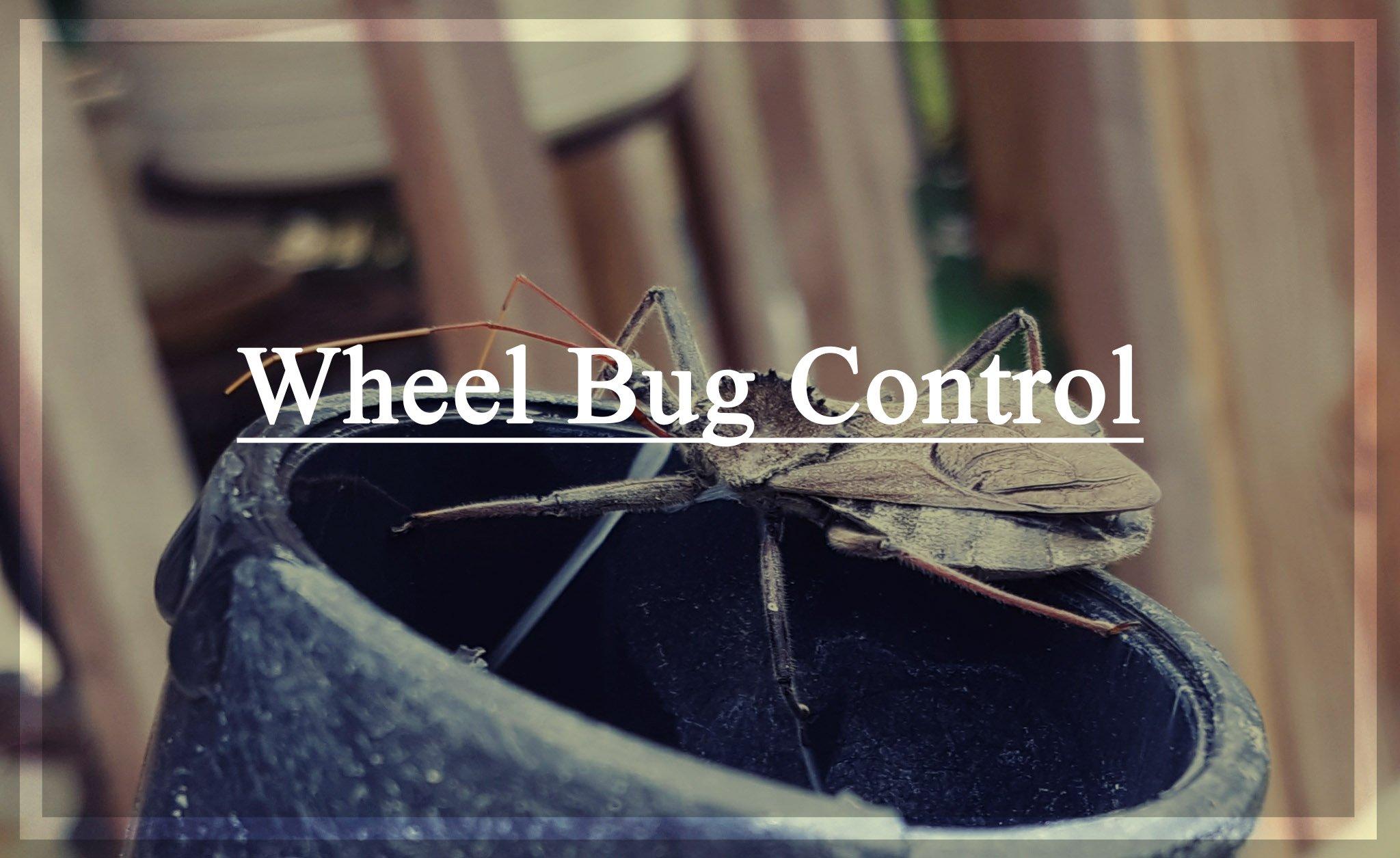 Wheel Bug Control