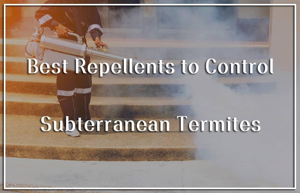 best subterranean termites repellents