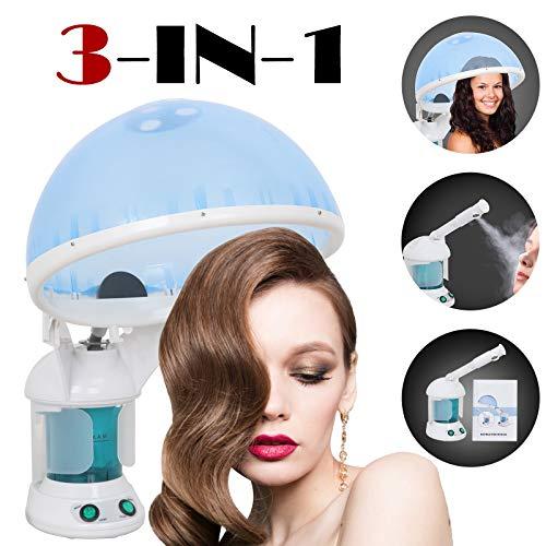 Hair and Facial Steamer