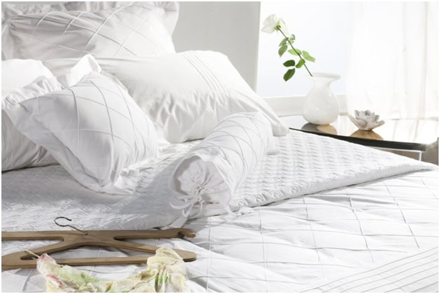 Get rid of bed bugs once and for all