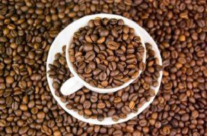 coffee repels ants