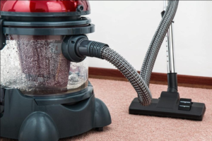 Vacuum beds to get rid of flea