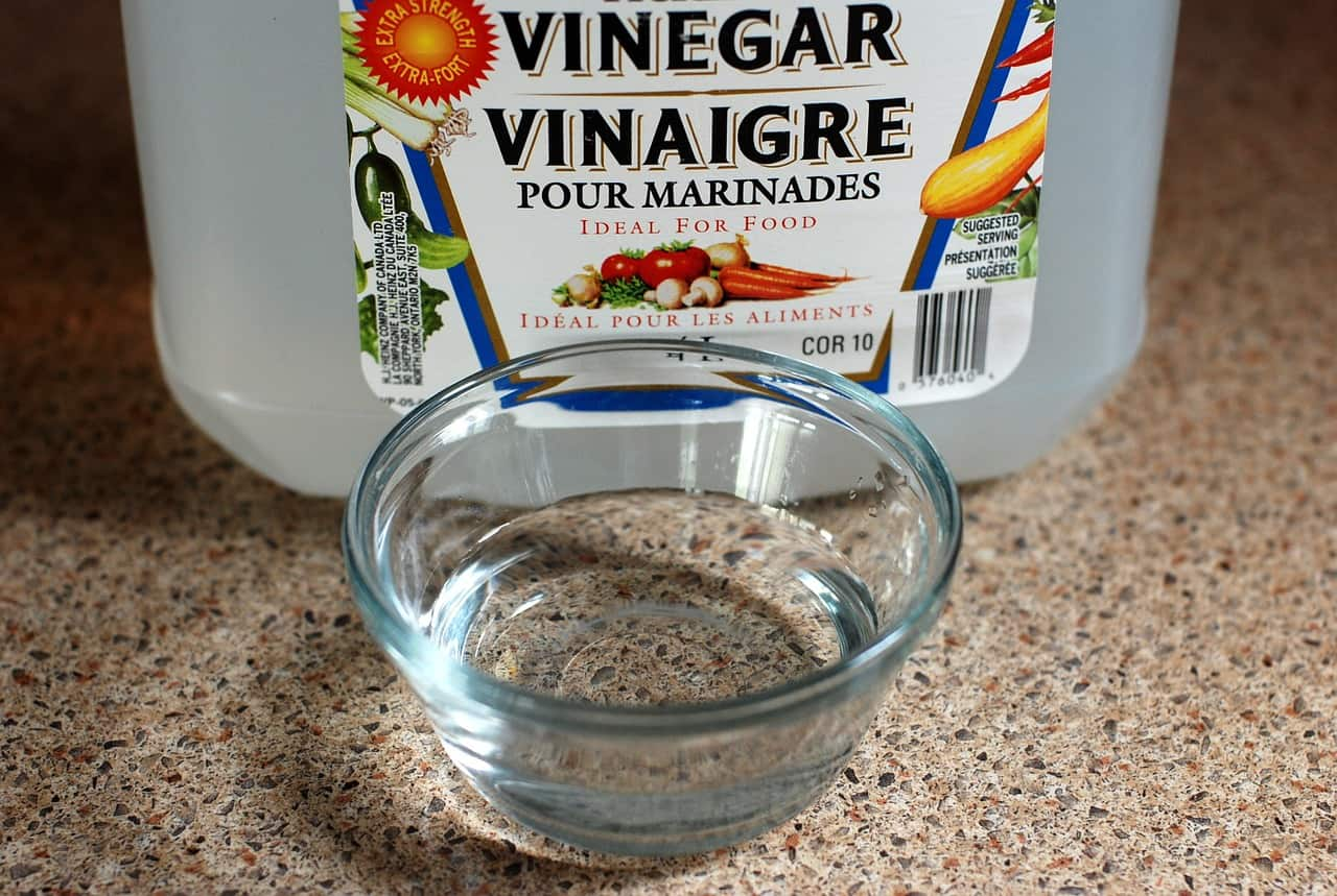 Vinegar to get rid of bed bugs