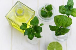 Peppermint Oil and Coconut Oil Mosquito Repellent
