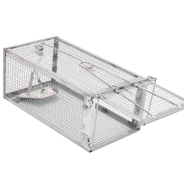 Kensizer Live Cage
