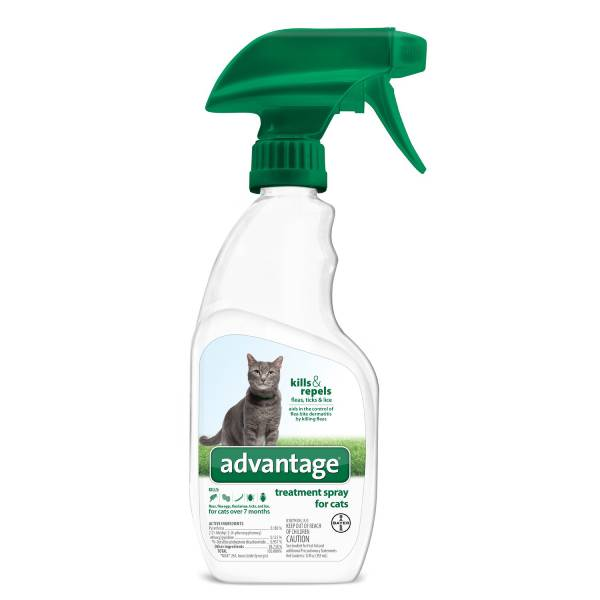 Best Cat Spray: Bayer Advantage Flea Tick and Lice Treatment Spray for Cats