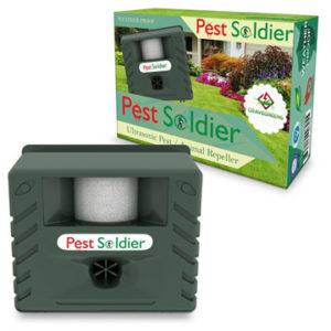 Pest Soldier